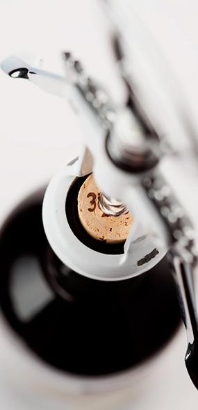 Шампанское и вина из разных уголков мира