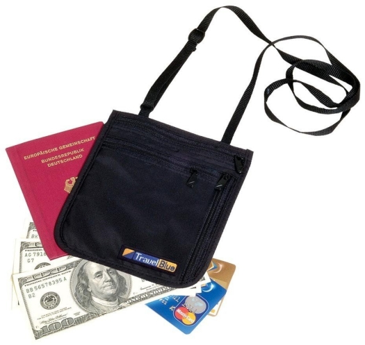 Travel Blue Money Bag