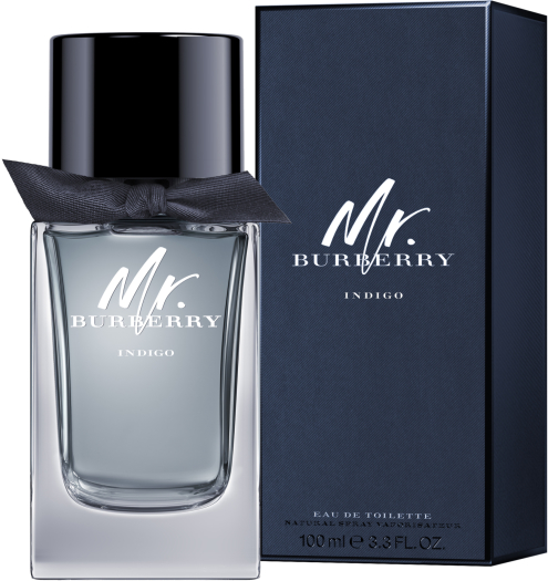 Burberry Mr.Burberry Indigo EdT 100ml