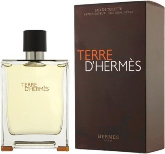 Hermes Terre D`Hermes EdT 100ml