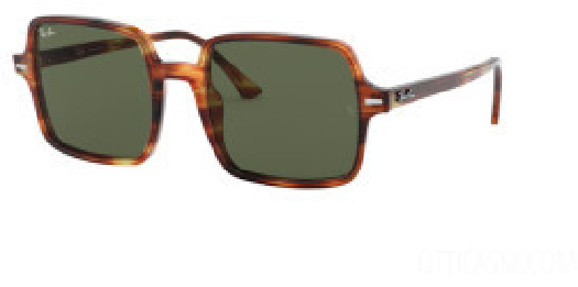 Ray-Ban Sunglasses RAY BAN RB1973