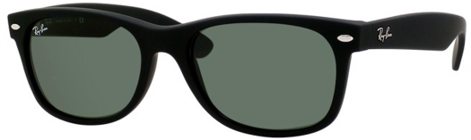 Ray-Ban Wayfarer Matte Black sunglasses