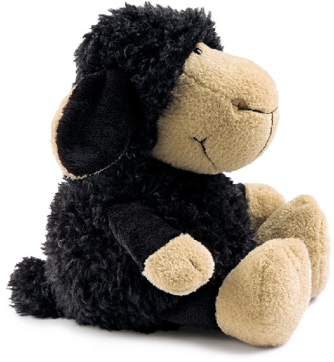 Nici Black Sheep